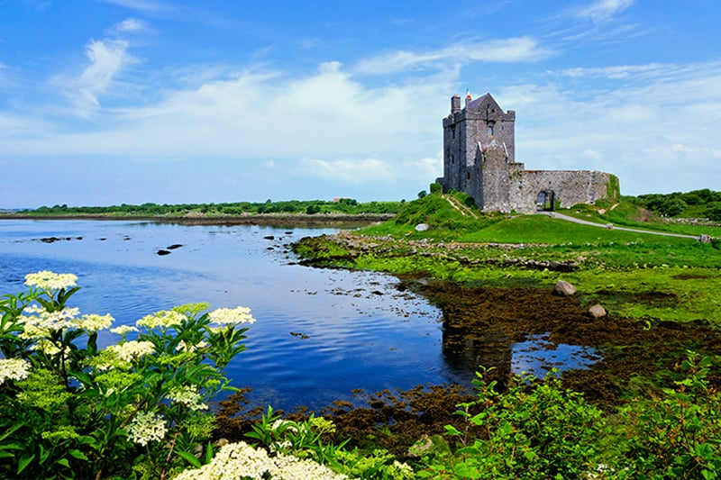 Castle Day Tour Southern Ireland